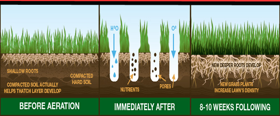 Aeration Of Grass In Des Moines