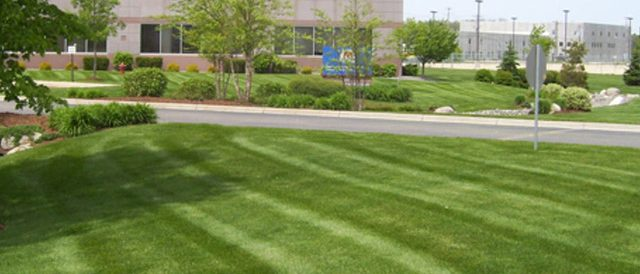 Commercial Grass Mowing Patterns In Des Moines