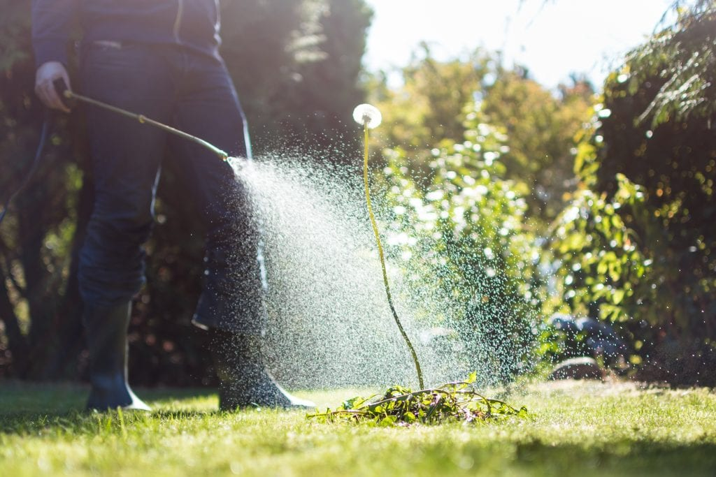 Weed Control Application