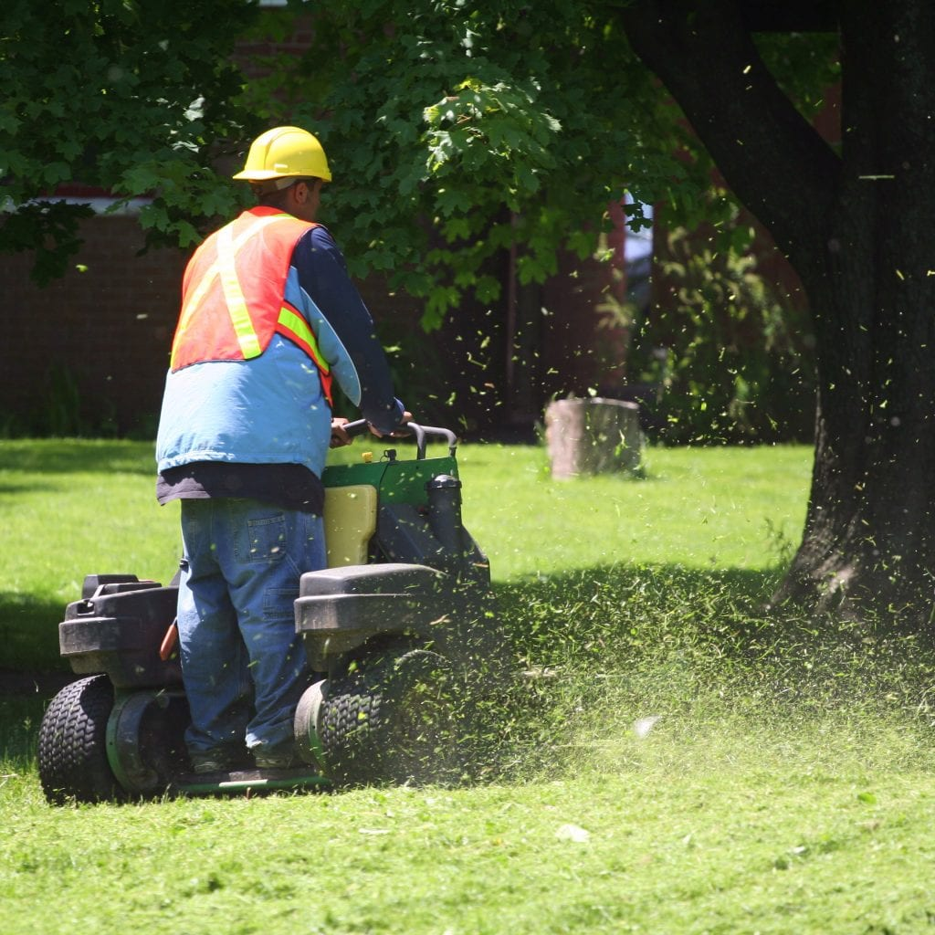 Man standing on a mower using it to mow a large, commercial lot